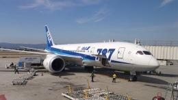 AE31Xさんが、ノーマン・Y・ミネタ・サンノゼ国際空港で撮影した全日空 787-8 Dreamlinerの航空フォト(飛行機 写真・画像)
