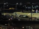 さくら13さんが、羽田空港で撮影したサウジアラビア王国政府 747-468の航空フォト(写真)