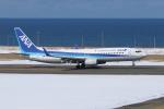 sumihan_2010さんが、稚内空港で撮影した全日空 737-881の航空フォト(写真)