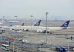 じーく。さんが、羽田空港で撮影したサウジアラビア王国政府 747-468の航空フォト(飛行機 写真・画像)