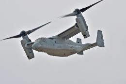 NIKKOREX Fさんが、相馬原駐屯地で撮影したアメリカ海兵隊 MV-22Bの航空フォト(写真)