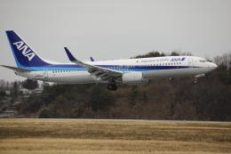 ピーチさんが、岡山空港で撮影した全日空 737-881の航空フォト(飛行機 写真・画像)