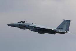 航空フォト:02-8919 航空自衛隊 F-15J Eagle