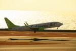 中部国際空港 - Chubu Centrair International Airport [NGO/RJGG]で撮影されたソラシド エア - Solaseed Air [6J/SNJ]の航空機写真