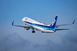 HK Express43さんが、伊丹空港で撮影した全日空 737-881の航空フォト(飛行機 写真・画像)