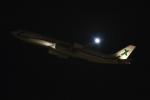 ファインディングさんが、羽田空港で撮影したエアXチャーター A340-312の航空フォト(写真)