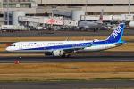 りんたろうさんが、羽田空港で撮影した全日空 A321-211の航空フォト(写真)
