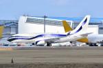 トロピカルさんが、成田国際空港で撮影したインターナショナル・ジェットクラブ 737-7GV BBJの航空フォト(写真)