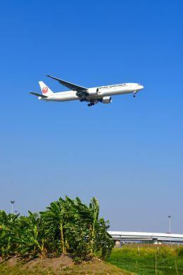 まいけるさんが、スワンナプーム国際空港で撮影した日本航空 777-346/ERの航空フォト(飛行機 写真・画像)