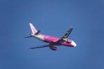kayさんが、那覇空港で撮影したピーチ A320-214の航空フォト(写真)
