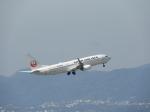 おっつんさんが、伊丹空港で撮影した日本航空 737-846の航空フォト(飛行機 写真・画像)