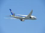 おっつんさんが、那覇空港で撮影した全日空 787-8 Dreamlinerの航空フォト(飛行機 写真・画像)
