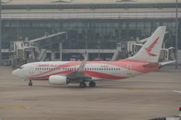 KKiSMさんが、武漢天河国際空港で撮影した瑞麗航空 737-7MEの航空フォト(飛行機 写真・画像)