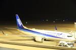 いんふぃさんが、広島空港で撮影した全日空 737-881の航空フォト(写真)