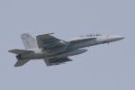 swamp foxさんが、厚木飛行場で撮影したアメリカ海軍 F/A-18F Super Hornetの航空フォト(写真)