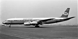 航空フォト:PH-DCD マーティンエアー DC-8
