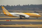 セブンさんが、成田国際空港で撮影したスクート (〜2017) 787-8 Dreamlinerの航空フォト(飛行機 写真・画像)