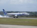 おっつんさんが、新石垣空港で撮影した全日空 787-8 Dreamlinerの航空フォト(飛行機 写真・画像)