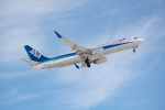 J-birdさんが、中標津空港で撮影した全日空 737-881の航空フォト(飛行機 写真・画像)