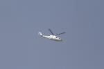 とらとらさんが、厚木飛行場で撮影したエクセル航空 S-76A+の航空フォト(飛行機 写真・画像)