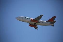 徳兵衛さんが、ダニエル・K・イノウエ国際空港で撮影したトランスエア 737-2T4C/Advの航空フォト(飛行機 写真・画像)