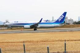 ガス屋のヨッシーさんが、伊丹空港で撮影した全日空 737-881の航空フォト(飛行機 写真・画像)