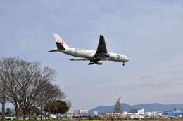 Cape_Eagleさんが、福岡空港で撮影した日本航空 777-246の航空フォト(飛行機 写真・画像)
