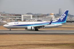 JA56SSさんが、伊丹空港で撮影した全日空 737-881の航空フォト(飛行機 写真・画像)