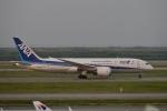 jjieさんが、上海浦東国際空港で撮影した全日空 787-8 Dreamlinerの航空フォト(写真)