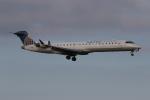 ゴンタさんが、ダラス・フォートワース国際空港で撮影したゴージェット・エアラインズ CL-600-2C10 Regional Jet CRJ-702の航空フォト(写真)