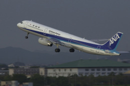 senyoさんが、名古屋飛行場で撮影した全日空 A321-131の航空フォト(飛行機 写真・画像)