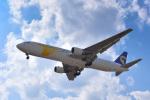 パンダさんが、成田国際空港で撮影したMIATモンゴル航空 767-3BG/ERの航空フォト(写真)