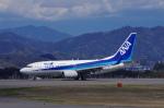 yabyanさんが、静岡空港で撮影した全日空 737-781の航空フォト(写真)