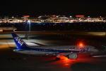 wislyさんが、羽田空港で撮影した全日空 787-8 Dreamlinerの航空フォト(写真)