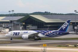 takaRJNSさんが、クアラルンプール国際空港で撮影した全日空 787-8 Dreamlinerの航空フォト(飛行機 写真・画像)