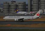 じゃりんこさんが、羽田空港で撮影した日本航空 767-346/ERの航空フォト(写真)