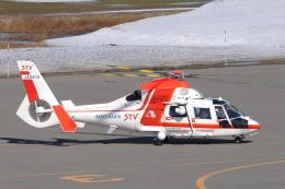 へりさんが、札幌飛行場で撮影した朝日航洋 AS365N3 Dauphin 2の航空フォト(写真)