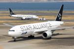 みなかもさんが、羽田空港で撮影した全日空 777-281の航空フォト(写真)