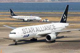 みなかもさんが、羽田空港で撮影した全日空 777-281の航空フォト(飛行機 写真・画像)