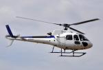 チャーリーマイクさんが、東京ヘリポートで撮影したディーエイチシー AS350B3 Ecureuilの航空フォト(写真)