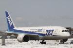 とらとらさんが、千歳基地で撮影した全日空 787-8 Dreamlinerの航空フォト(写真)