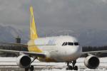 とらとらさんが、千歳基地で撮影したバニラエア A320-216の航空フォト(飛行機 写真・画像)