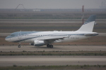 いっとくさんが、上海浦東国際空港で撮影したエイビエーション・リンク・カンパニー A319-111の航空フォト(写真)