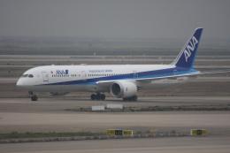 しゃこ隊さんが、上海浦東国際空港で撮影した全日空 787-9の航空フォト(飛行機 写真・画像)