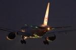 多楽さんが、成田国際空港で撮影した日本航空 777-246/ERの航空フォト(写真)