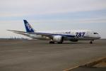 北の熊さんが、新千歳空港で撮影した全日空 787-8 Dreamlinerの航空フォト(飛行機 写真・画像)