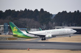 kumagorouさんが、成田国際空港で撮影した春秋航空日本 737-86Nの航空フォト(写真)