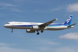 EXIA01さんが、名古屋飛行場で撮影した全日空 A321-131の航空フォト(飛行機 写真・画像)