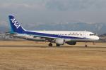 EXIA01さんが、名古屋飛行場で撮影した全日空 A320-211の航空フォト(写真)