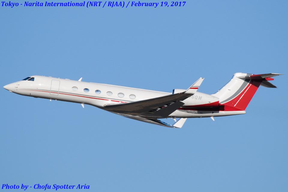 Chofu Spotter Ariaさんのアメリカ企業所有 Gulfstream Aerospace G-V (N846QM) 航空フォト